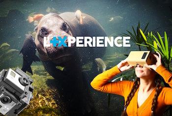 L'+Xpérience Banque Populaire