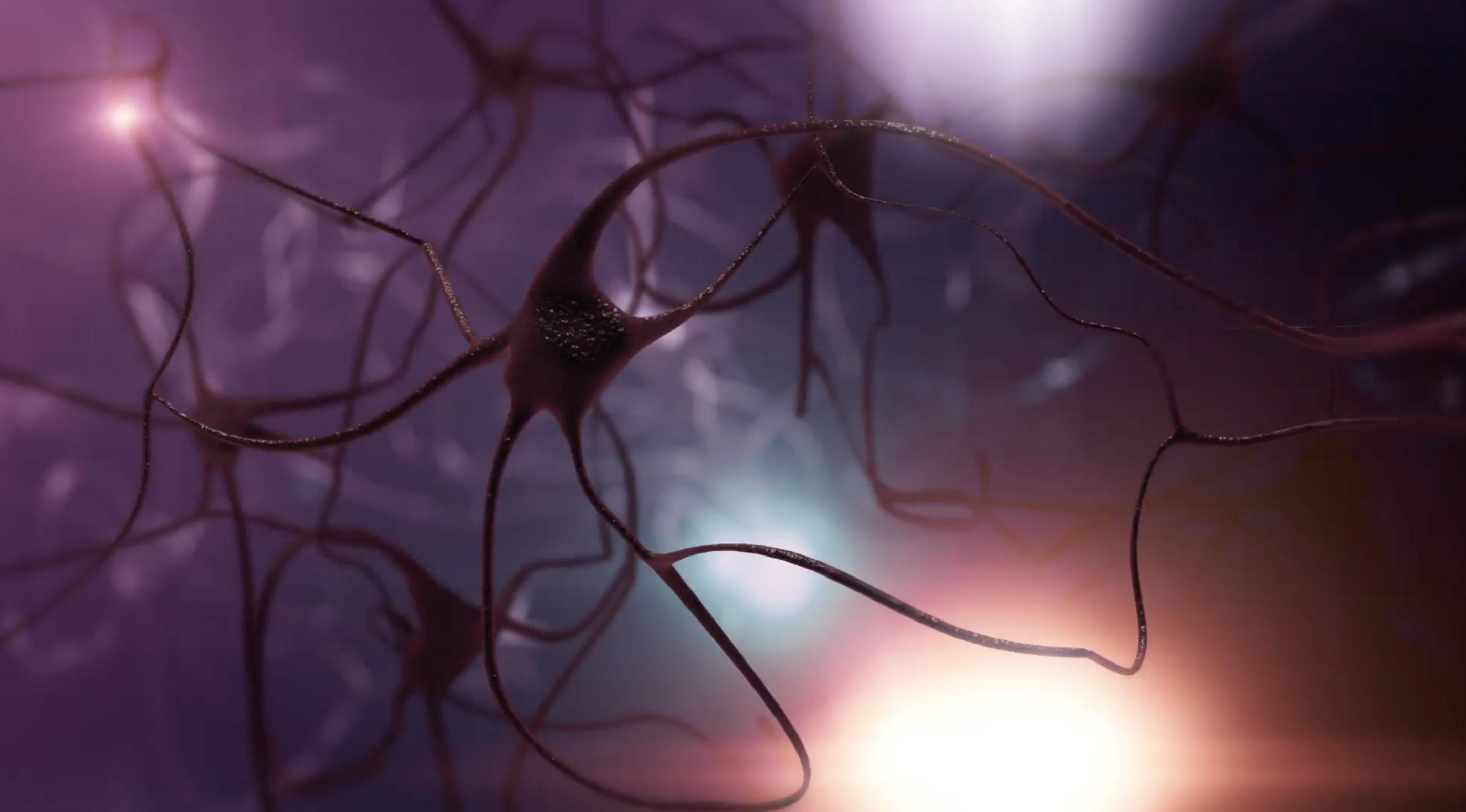 Notre cerveau est-il un adepte du storytelling ?