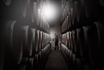 Syndicat des vins de Graves